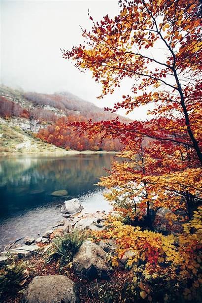Portrait Nature Landscape Display Autumn Spring Sky