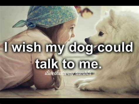 puppy world cute puppy pictures  sayings