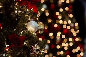 Christmas photography lights tree december Photo by Paul ...