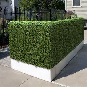 artificial outdoor hedge artificial flowers plants and trees chicago by home infatuation