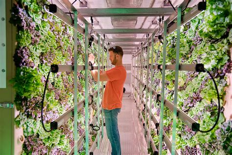 tiger corner farms produces full scale aeroponic crops recycled