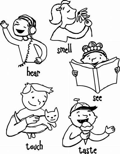 Senses Five Coloring Pages Clipart Preschool Children