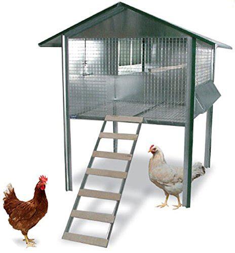 gabbia per galline pollaio fai da te casette realizzare con il the baltic post