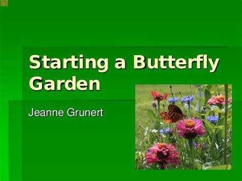 starting a butterfly garden