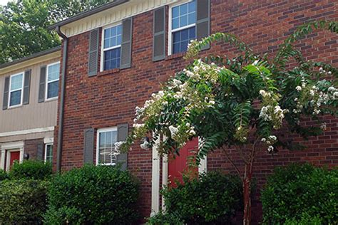 1 bedroom apartments in nashville tn cheap one bedroom apartments in nashville tn 1 bedroom