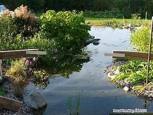 construire un pont de bois en arc pour bassin exterieur et With plan de bassin de jardin 3 construire un pont de jardin etapes de construction plan