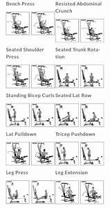 Bowflex Workout Routine Bowflex Workout Cable Workout