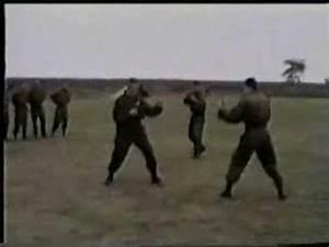 Arkanovi Tigrovi - YouTube