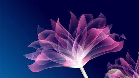 flor purpura   fondos de pantalla  wallpapers