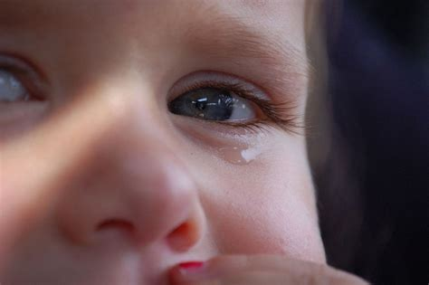 shed tear why we cry the chemistry of tears a moment of science
