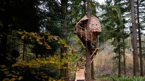 Local Couple's Treehouse Masters Episode Airs Friday