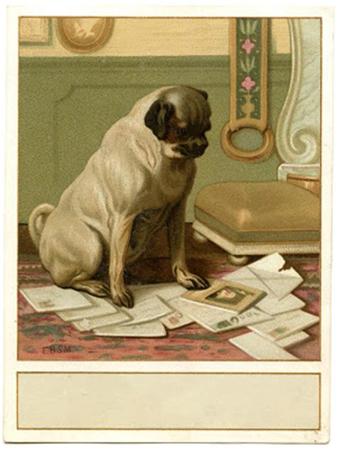 vintage image cute dog  mail label  graphics