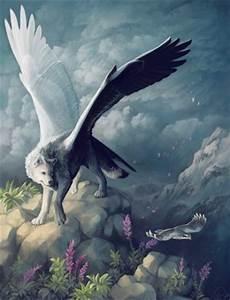 rose louve blanche ailee blog de louve moon With couleurs chaudes et froides 15 animaux imaginaires