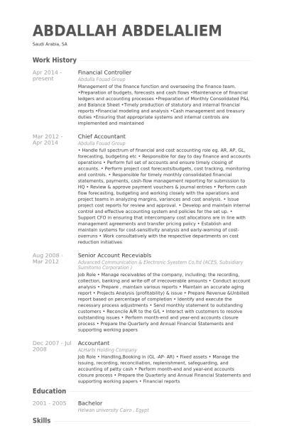Financial Controller Resume Samples  Visualcv Resume