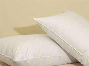 Phoenix down 75 white goose feather 25 white goose down for 75 feather 25 down pillow