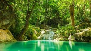 Waterfalls, Between, Green, Trees, With, Reflection, Of, Trees, On