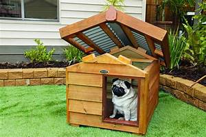 How to choose the insulated outdoor dog houses for Cool dog kennel designs