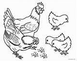 Coloring Farm Animal Animals Printable Cool2bkids Getdrawings sketch template