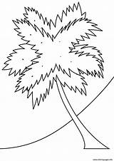 Palm Coloring Tree Pages Beach Printable Coconut Adults Trees Strange Seasons Drawing Coloringpagesonly Getcolorings sketch template