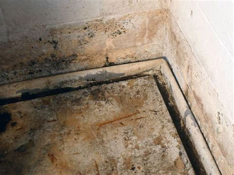Installing An Effective Weeping Tile System In Greater