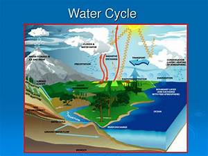 ppt water cycle powerpoint presentation free