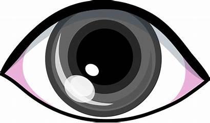 Eye Eyes Clipart Clip Gray Grey Cartoon