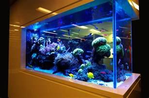 aquarium designer modern aquarium designs for home that looks beautiful decorating aquarium designs aquarium for