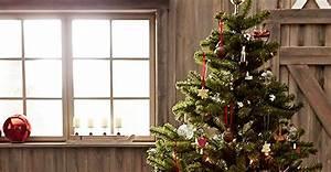 Weihnachtsbaum Richtig Schmücken : weihnachtsschmuck die besten tipps f r einen festlichen baum ~ Buech-reservation.com Haus und Dekorationen