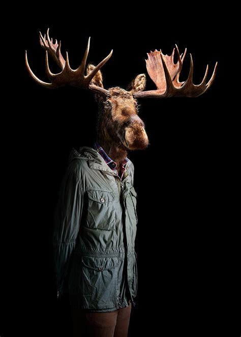 portraits  fashionably dressed wildlife  floral