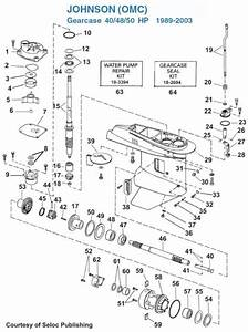 40 Hp Evinrude Parts Diagram