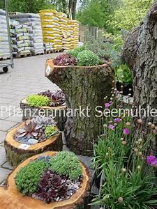 Dünger Für Obstbäume : d nger pflanzenschutz schutz vor wildverbiss alles f r ~ Michelbontemps.com Haus und Dekorationen