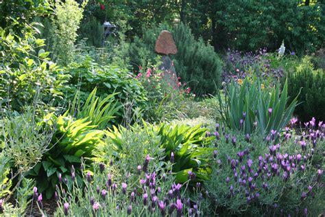 the healing garden the healing garden 10 herbs to grow in the survival