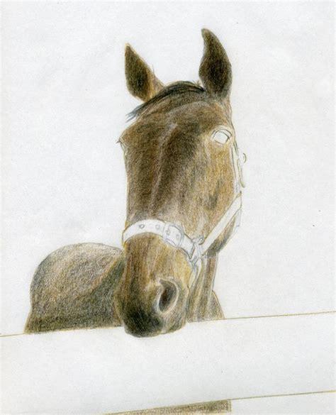 draw horse head