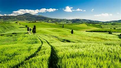 Tuscany Wallpapers Bright Locality Photographs Landscape