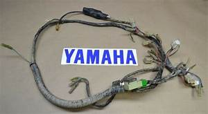 Yamaha Warrior Yfm350 Yfm 350 Moto 4 Complete Wire Wiring Harness Loom 1996 96 For Sale Online