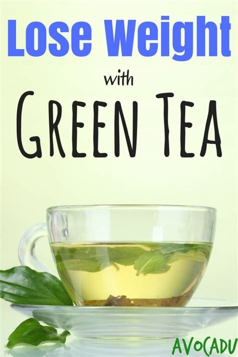 How to Use Green Tea to Lose Weight   Avocadu