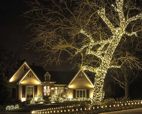 christmas lights in trees christmas decor is our specialty light up nashville