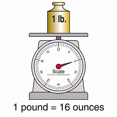 Clipart Measures Scale Clip Pound Weights Kilogram