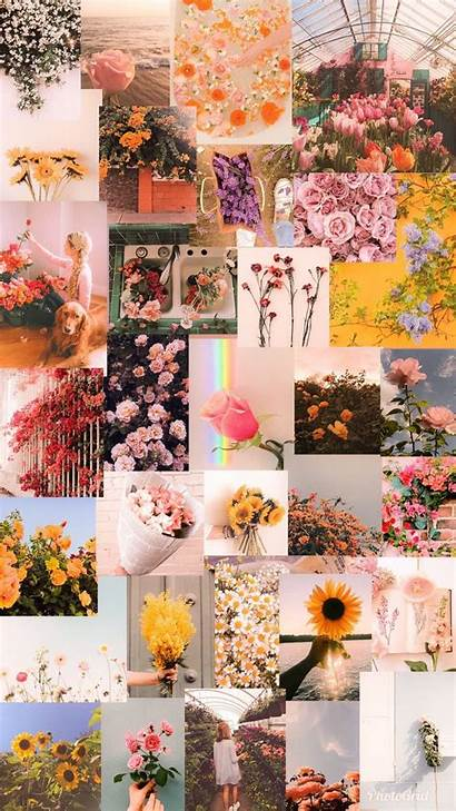 Aesthetic Iphone Vsco Pastel Collage Pretty Homemade
