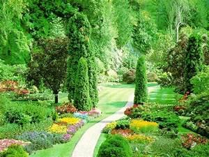 Beautiful Nature Wallpaper - Random Wallpaper (32603809 ...