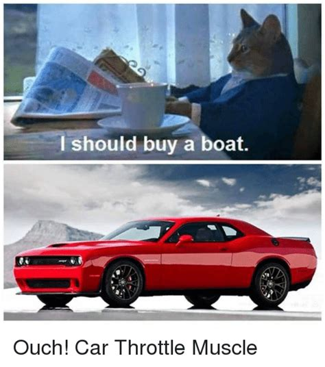 Buy A Boat by Search I Should Buy A Boat Cat Memes On Me Me