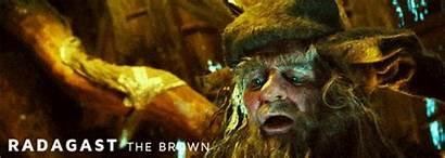 Radagast Hobbit Brown Rings Lord Wizards Saruman