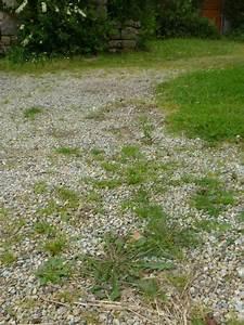 Désherbant Naturel Pour 600m2 : pingl par le vourch sur jardin potager d sherbant ~ Nature-et-papiers.com Idées de Décoration
