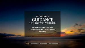 Guidance Quotes | QUOTES OF THE DAY