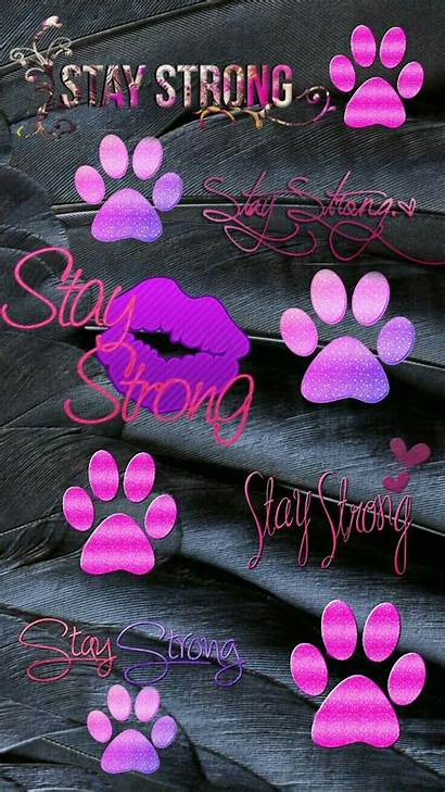 Paw Prints Kisses Cellphone Dog Backgrounds Wallpapers