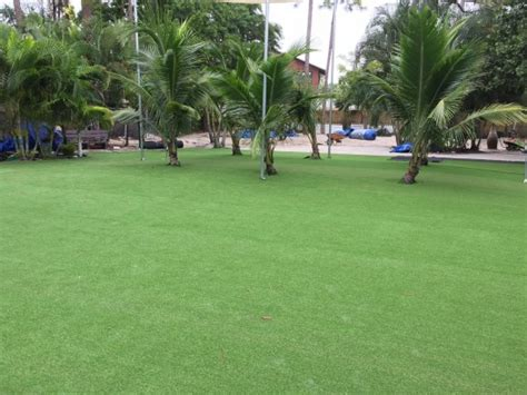 grass installation reading pennsylvania backyard