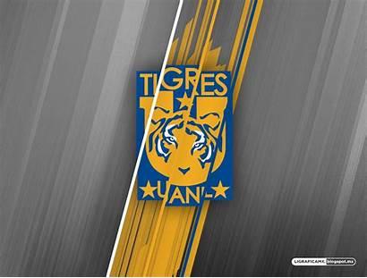 Tigres Wallpapers Solo Comentarios Hay