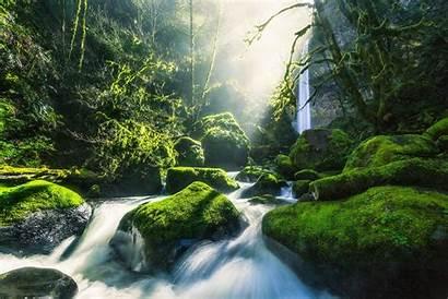 Nature Waterfall 4k Desktop Forest Oregon Pc
