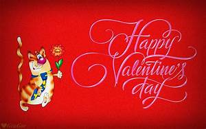 Happy Valentines Day Hd Wallpaper 515453 : Wallpapers13.com