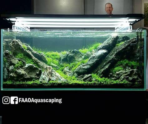 536 Best Aquascaping Images On Pinterest Aquariums